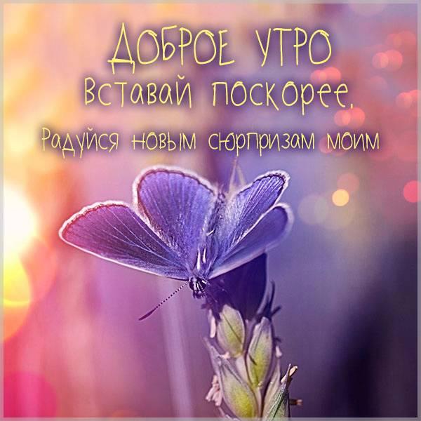 Фото доброе утро женщине прикольное - скачать бесплатно на otkrytkivsem.ru
