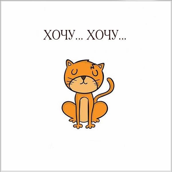 Фото хочу смешное - скачать бесплатно на otkrytkivsem.ru
