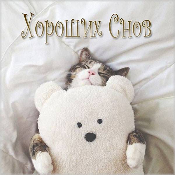 Фото хороших снов - скачать бесплатно на otkrytkivsem.ru