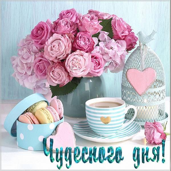 Фото картинка чудесного дня - скачать бесплатно на otkrytkivsem.ru