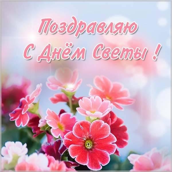 Фото картинка с днем Светы - скачать бесплатно на otkrytkivsem.ru