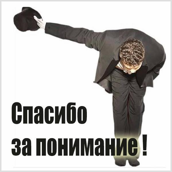 Фото картинка спасибо за понимание - скачать бесплатно на otkrytkivsem.ru