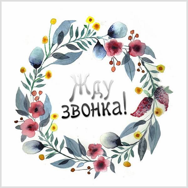 Фото картинка жду звонка прикольная - скачать бесплатно на otkrytkivsem.ru