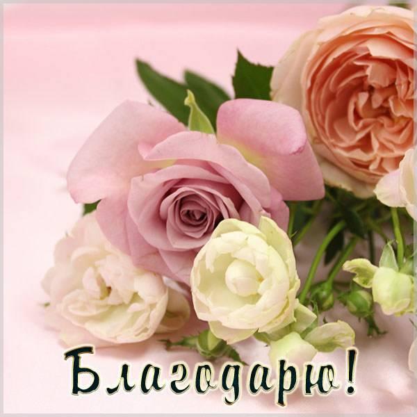 Фото открытка благодарю - скачать бесплатно на otkrytkivsem.ru
