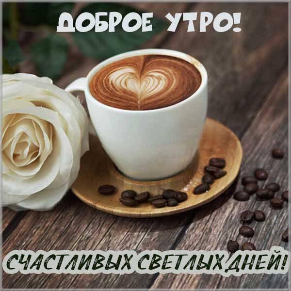 Фото открытка доброе утро и хорошего дня - скачать бесплатно на otkrytkivsem.ru