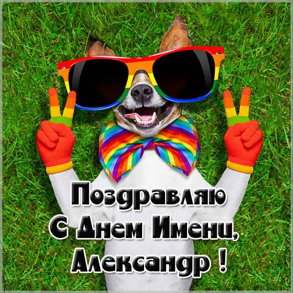 Фото открытка на день Александра - скачать бесплатно на otkrytkivsem.ru
