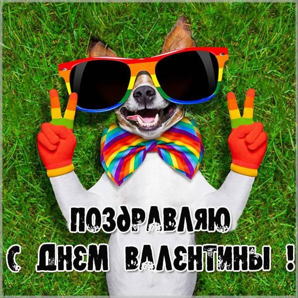 Фото открытка на день Вероники - скачать бесплатно на otkrytkivsem.ru