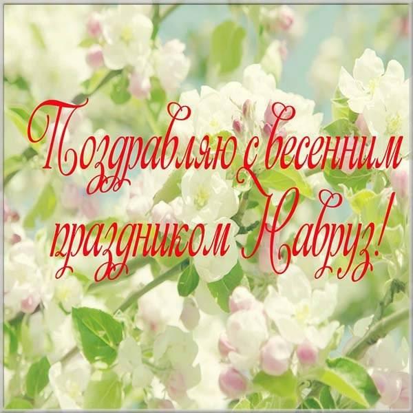 Фото открытка на Наурыз - скачать бесплатно на otkrytkivsem.ru