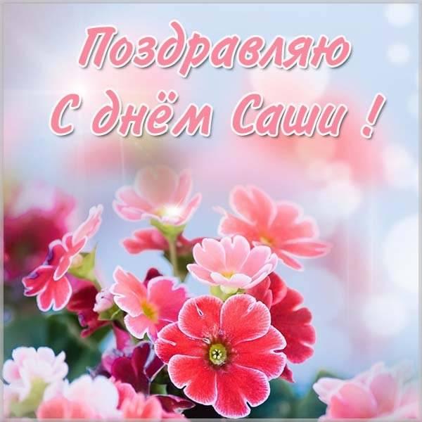 Фото открытка с днем Саши - скачать бесплатно на otkrytkivsem.ru