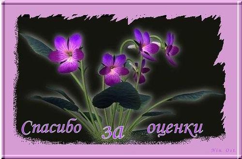 Фото открытка спасибо за оценку - скачать бесплатно на otkrytkivsem.ru