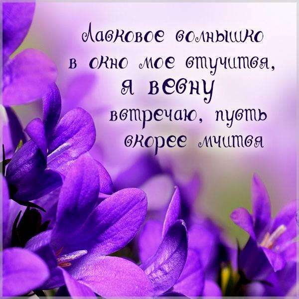 Фото ожидание весны фиалка - скачать бесплатно на otkrytkivsem.ru