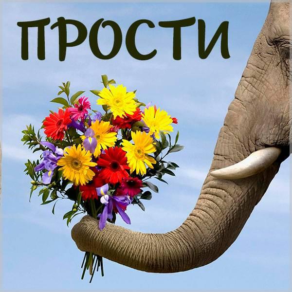 Фото прикол прости - скачать бесплатно на otkrytkivsem.ru
