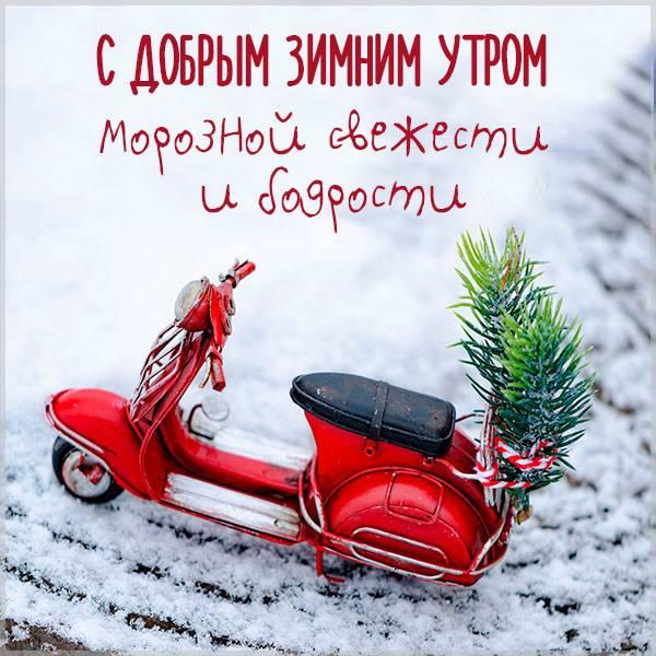 Фото с добрым зимним утром прикольное - скачать бесплатно на otkrytkivsem.ru