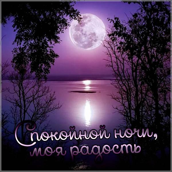 Фото спокойной ночи моя радость - скачать бесплатно на otkrytkivsem.ru