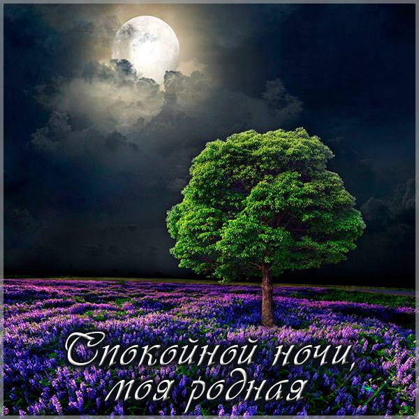 Фото спокойной ночи родная моя - скачать бесплатно на otkrytkivsem.ru