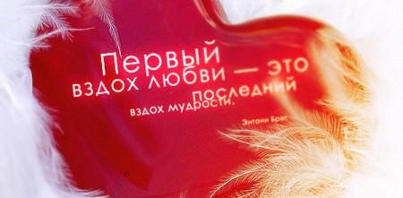 Фраза о любви в картинках - скачать бесплатно на otkrytkivsem.ru