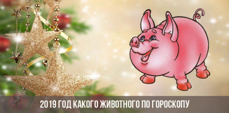 Год Желтой Земляной Свиньи - скачать бесплатно на otkrytkivsem.ru