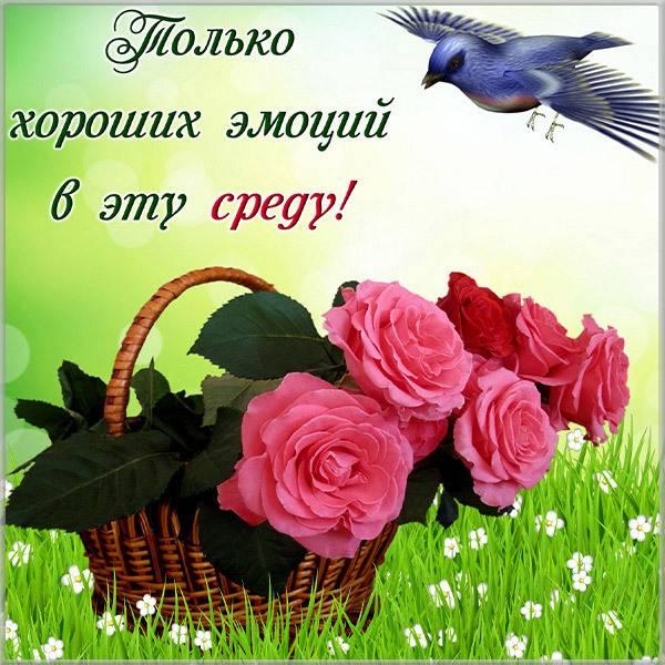 Хорошего настроения в среду прикольная картинка - скачать бесплатно на otkrytkivsem.ru