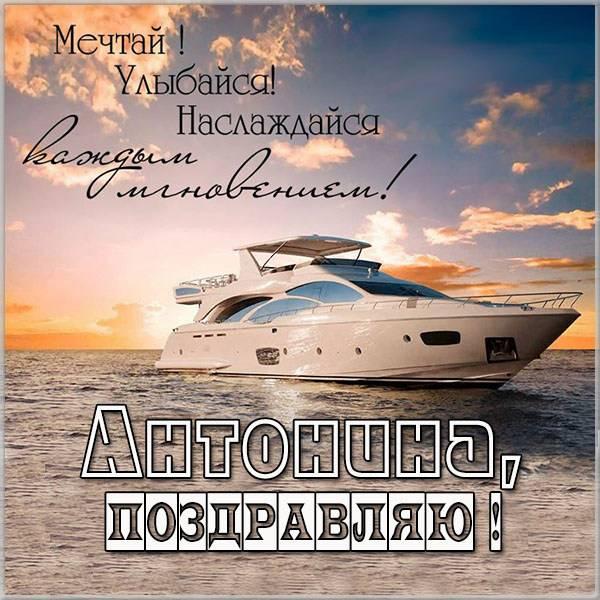 Именная открытка Антонине - скачать бесплатно на otkrytkivsem.ru