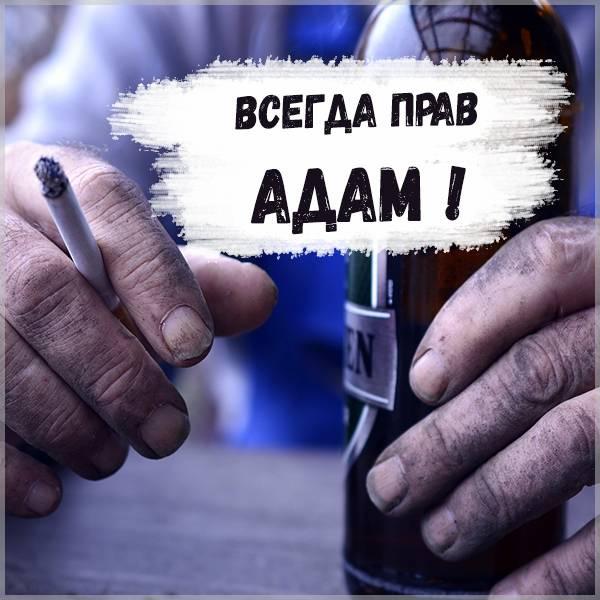 Картинка Адам всегда прав - скачать бесплатно на otkrytkivsem.ru