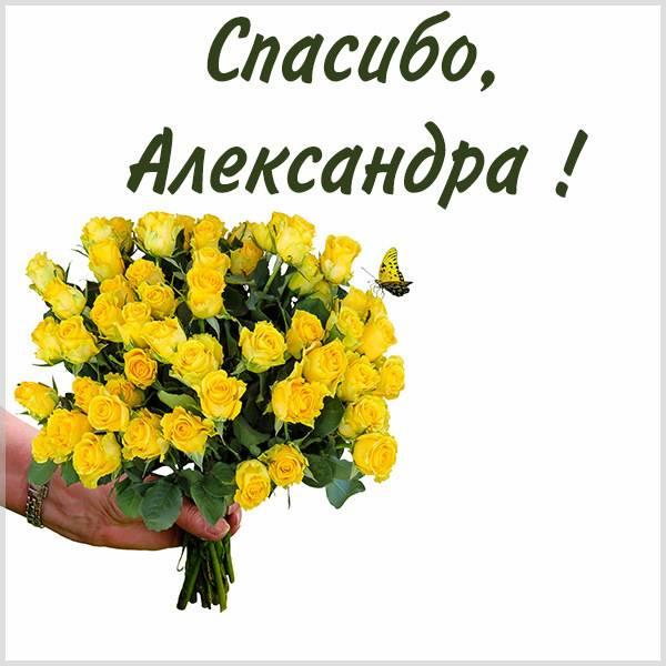 Картинка Александра спасибо - скачать бесплатно на otkrytkivsem.ru