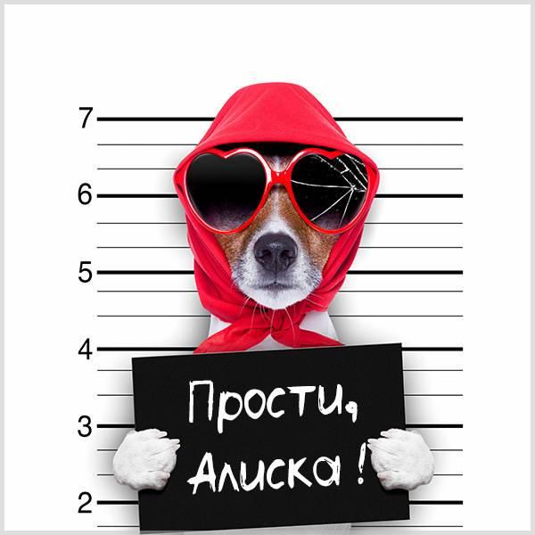 Картинка Алиска прости - скачать бесплатно на otkrytkivsem.ru