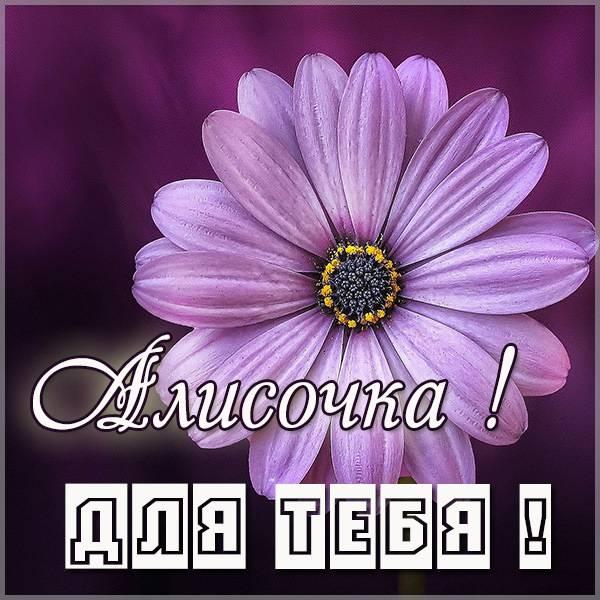Картинка Алисочка для тебя - скачать бесплатно на otkrytkivsem.ru