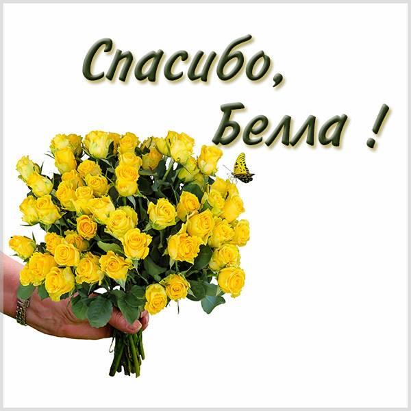 Картинка Белла спасибо - скачать бесплатно на otkrytkivsem.ru