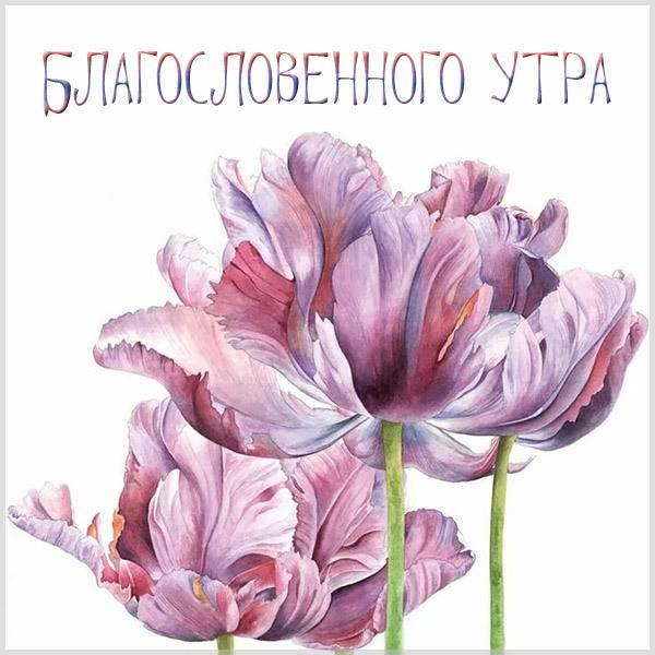 Картинка благословенного утра красивая - скачать бесплатно на otkrytkivsem.ru