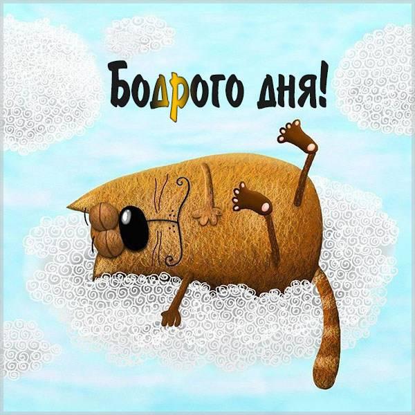 Картинка бодрого дня прикольная смешная - скачать бесплатно на otkrytkivsem.ru