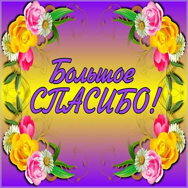 Картинка большое спасибо с надписью - скачать бесплатно на otkrytkivsem.ru