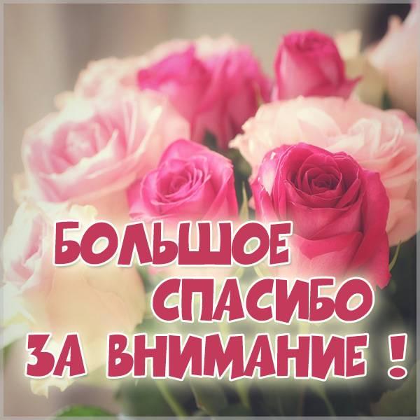 Картинка большое спасибо за внимание - скачать бесплатно на otkrytkivsem.ru