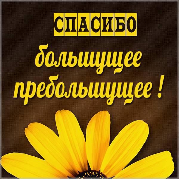 Картинка большущее пребольшущее спасибо - скачать бесплатно на otkrytkivsem.ru