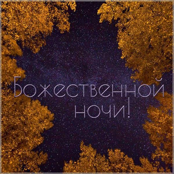 Картинка божественной ночи - скачать бесплатно на otkrytkivsem.ru