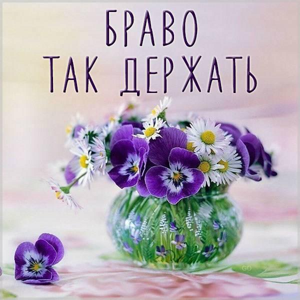 Картинка браво так держать - скачать бесплатно на otkrytkivsem.ru