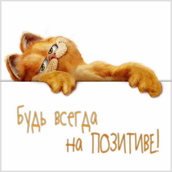 Картинка будь всегда на позитиве - скачать бесплатно на otkrytkivsem.ru