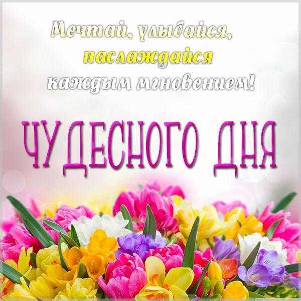 Картинка чудесного дня и настроения - скачать бесплатно на otkrytkivsem.ru