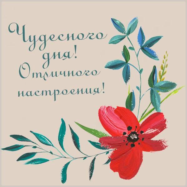 Картинка чудесного дня и отличного настроения красивая - скачать бесплатно на otkrytkivsem.ru
