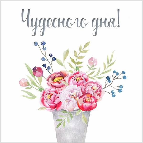 Картинка чудесного дня цветы - скачать бесплатно на otkrytkivsem.ru