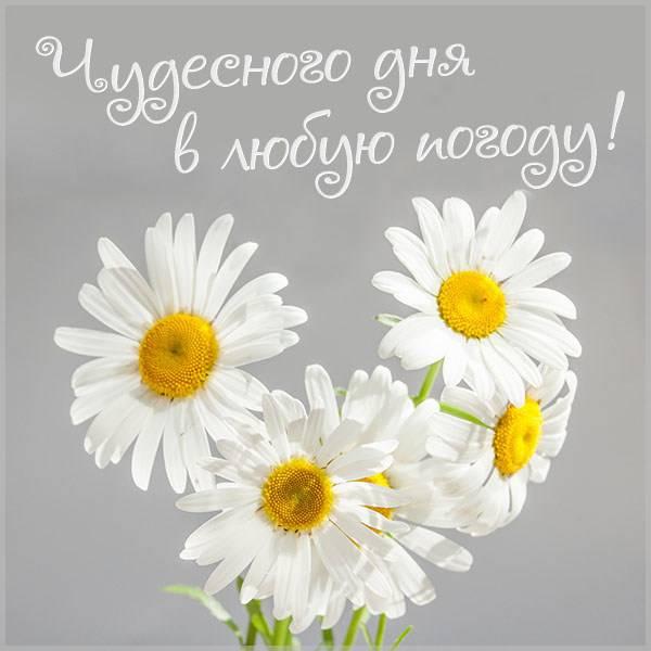 Картинка чудесного дня в любую погоду - скачать бесплатно на otkrytkivsem.ru