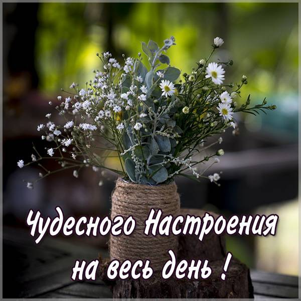 Картинка чудесного настроения на весь день красивая - скачать бесплатно на otkrytkivsem.ru