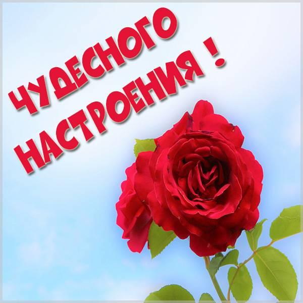 Картинка чудесного настроения - скачать бесплатно на otkrytkivsem.ru