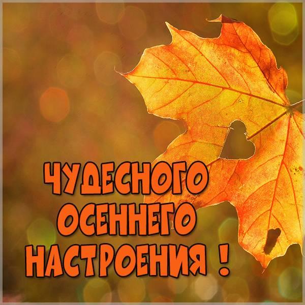 Картинка чудесного осеннего настроения - скачать бесплатно на otkrytkivsem.ru