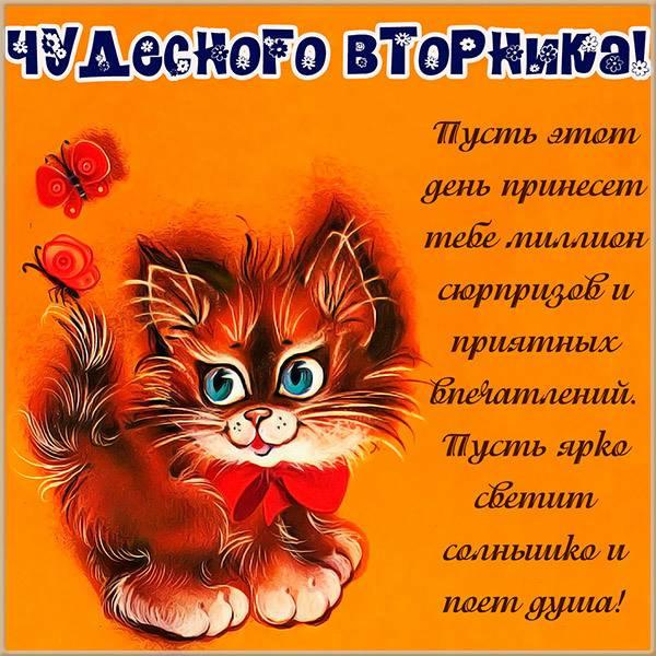 Картинка чудесного вторника и доброго дня - скачать бесплатно на otkrytkivsem.ru