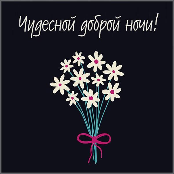 Картинка чудесной доброй ночи - скачать бесплатно на otkrytkivsem.ru