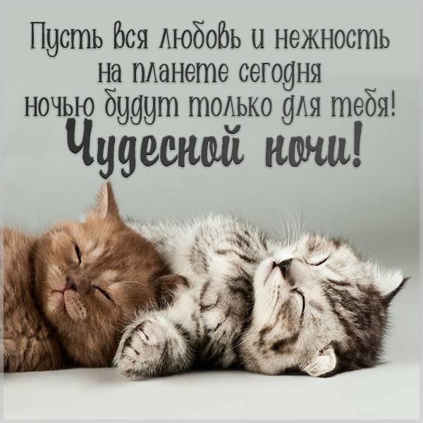Картинка чудесной ночи новая - скачать бесплатно на otkrytkivsem.ru