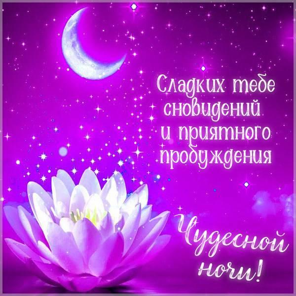 Картинка чудесной ночи с пожеланием красивая - скачать бесплатно на otkrytkivsem.ru