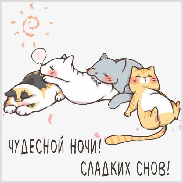 Картинка чудесной ночи сладких снов - скачать бесплатно на otkrytkivsem.ru