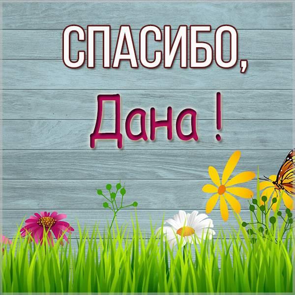 Картинка Дана спасибо - скачать бесплатно на otkrytkivsem.ru