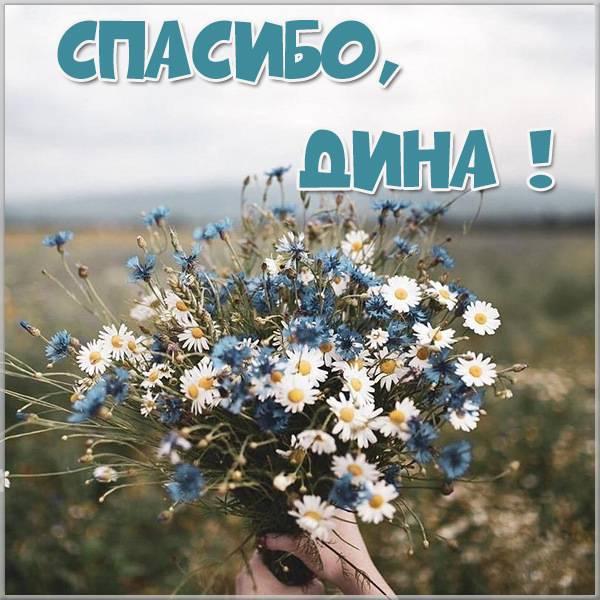 Картинка Дина спасибо - скачать бесплатно на otkrytkivsem.ru